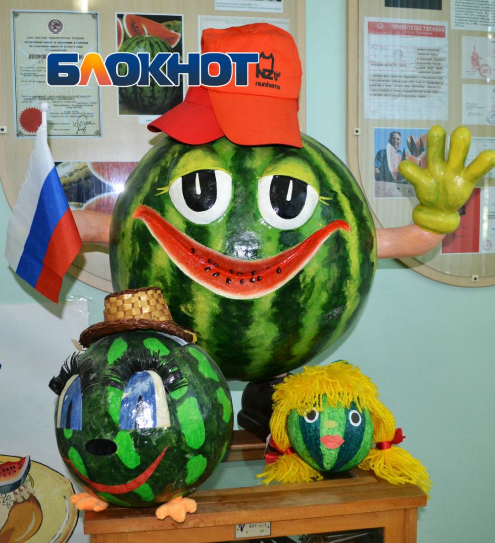 В Астрахани начались продажи местных арбузов