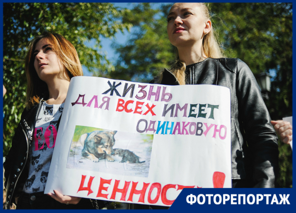 В Астрахани прошёл митинг в защиту животных