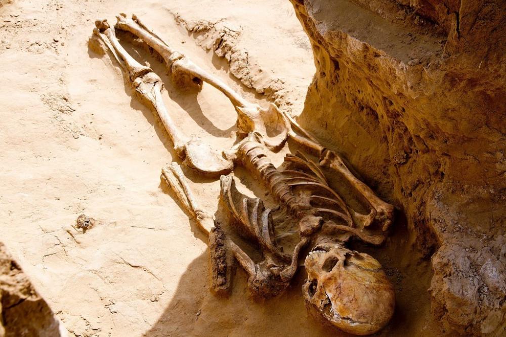 Астраханцы увидели плохой знак в раскопках могилы сарматского воина