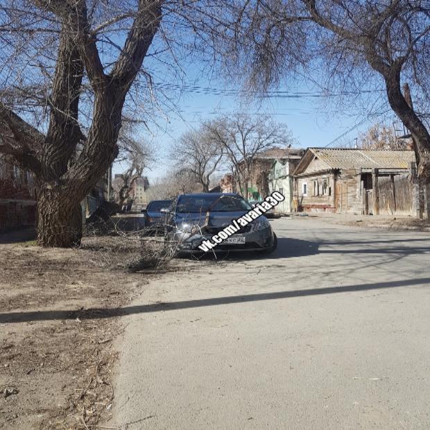 В Астрахани упавшая ветка повредила машину