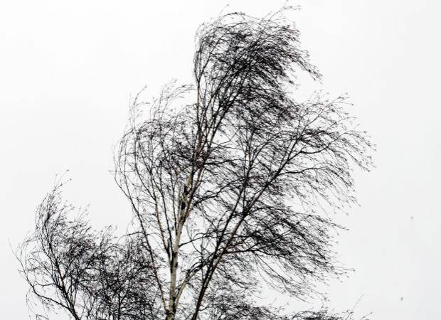 Астраханцам обещают ураганный ветер