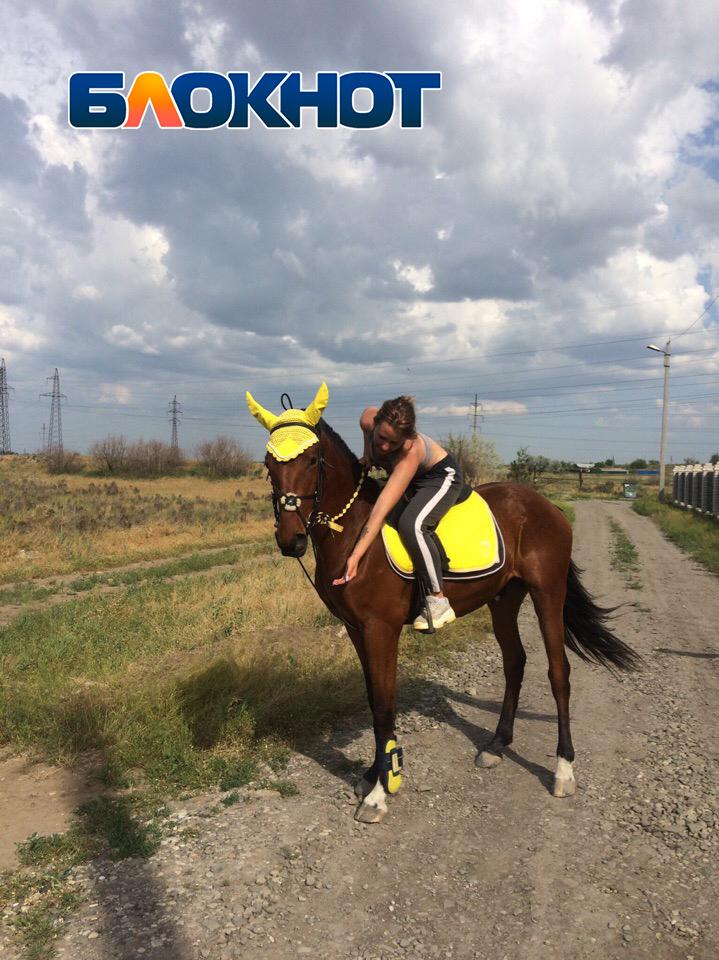 В Астраханской области у девушки пропал конь