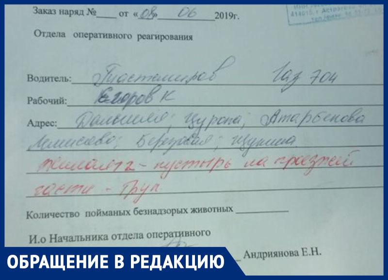 Неизвестная организация ведет отлов собак в Астрахани